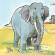 पागल हाथी और राजा की कहानी