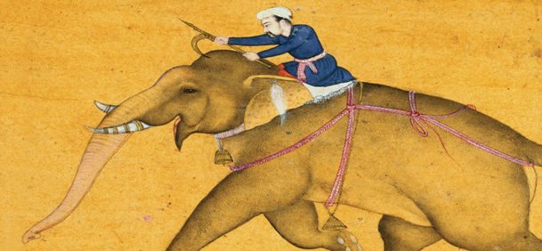 elephants and king story