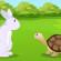 कछुआ  और  खरगोश