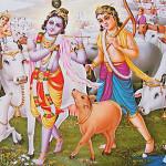 chalo man shri vrindavan dham bhajan