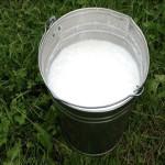 A bucket of milk
