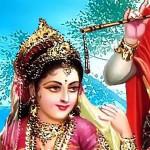 sansaaree - vyavasaayee mein bhed
