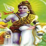 deva-hoee-na-bhikaaree-pandhareecha-vaarakaree